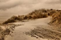 Dunes (Sepia) von sandra cockayne