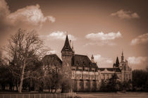 Joey-lawrence-castle-in-the-city-sepia