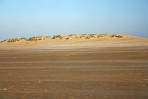 Dunes.. by sandra cockayne
