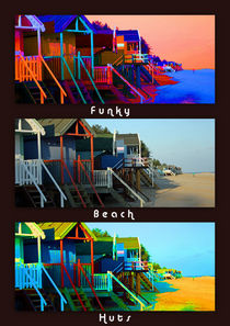 Funky Beach Huts Collage by sandra cockayne