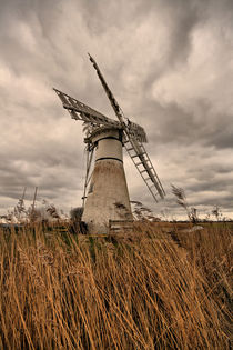 Thurne Mill. by sandra cockayne