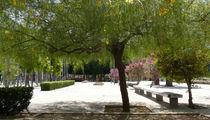 Parkansicht von Ella 2000