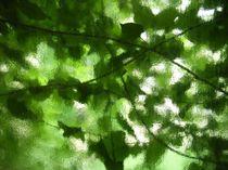Blätterfenster von Ella 2000
