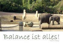 Balance von Tina M. Emig