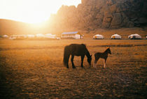 sunset in mongolia by Giorgio Giussani