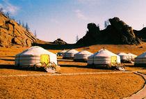 Ger Camp von Giorgio Giussani