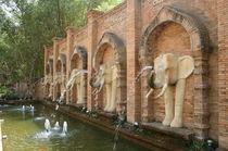 elephants von whoiamann