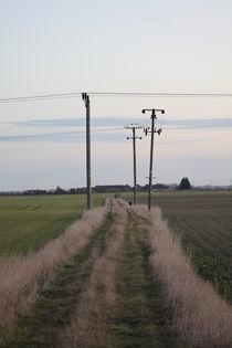footpath by mark-philpott