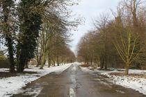 snowy path von mark-philpott