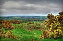 View from Almscliff Crag #8. von Colin Metcalf