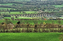 Arthington Viaduct. by Colin Metcalf