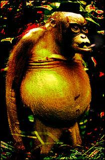 Monkey Man by Yuri Rodrigues de Oliveira