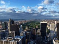 NYC: Central Park von Nina Papiorek