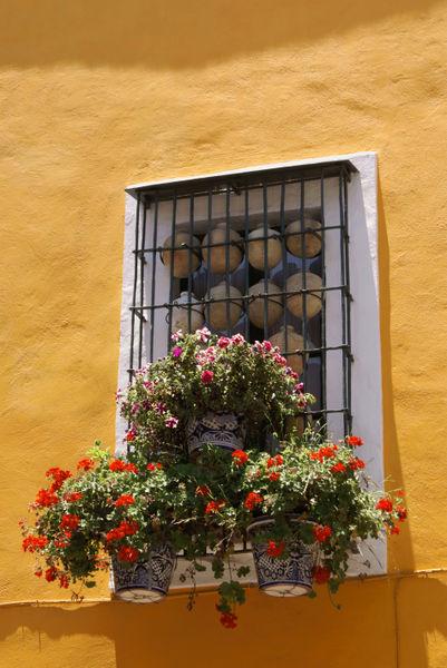 Puebla0125
