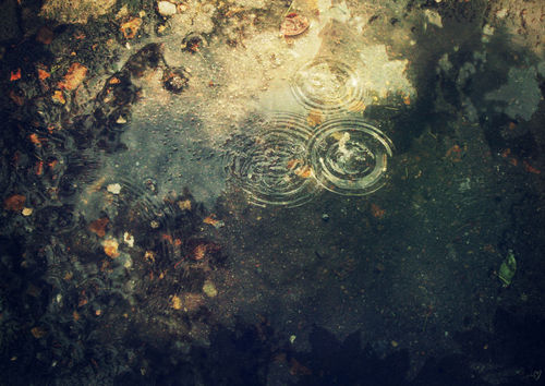 Ripples-rb-c-sybillesterk