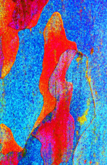 Spring Eucalypt Abstract 9 by Margaret Saheed