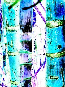 Blue-bamboo2