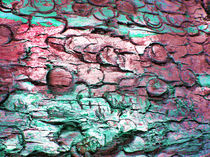 Eucalyptusrinde by Martina  Rick