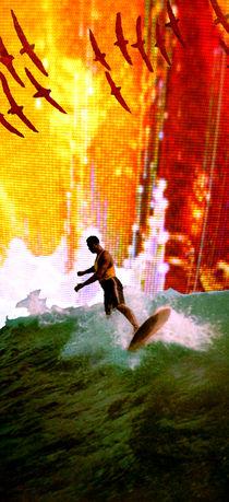 el surfista cósmico 2 by eduardo paz carlson
