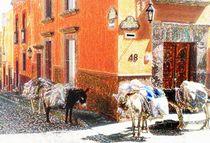 Donkeys-in-street1