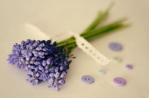 Stylized vintage bouquet of muscari flowers  by irur