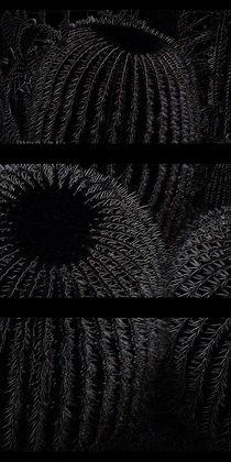 Sitzfleisch (Schwarz) von Tina M. Emig