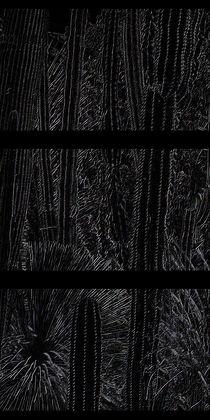 Unberechenbarkeit (Schwarz) von Tina M. Emig