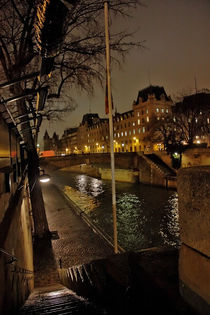 streetlight notre dame by Stephanie Wüstinger