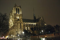lights of Notre Dame by Stephanie Wüstinger