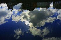 Shy Sun von Azzurra Di Pietro