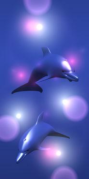 120507-delfin4