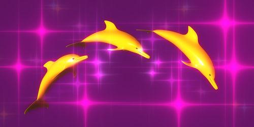 120507-delfin5