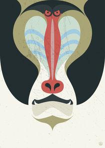 Sir Baboon von Luca Morandini
