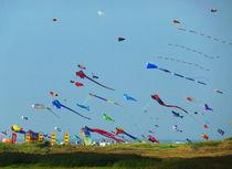 kites von Rudolf Strasser