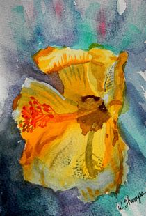 Yellow Hibiscus Shadows by Warren Thompson