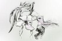 COLIBRI by Karin Russer