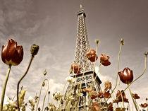 Erinnerungen an Paris von Helga Sevecke