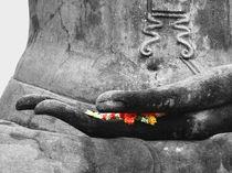Hand-of-buddha