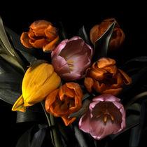 tulpenbouquet by helmut krauß