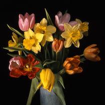 blumenstrauss mit tulpen und narzissen by helmut krauß