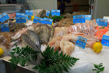 Fresh-fish-honfleur0163
