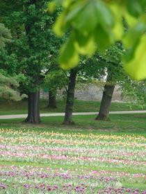 Frühling im Park by Ka Wegner