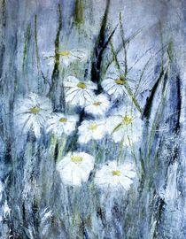 Gänseblümchen von Christine Lamade