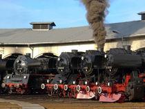 Dampflokomotiven am Lokschuppen von Jörg Hoffmann