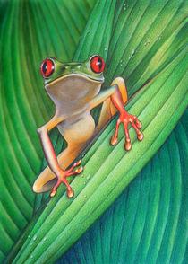 TREEFROG by Karin Russer