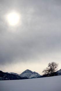 Bavarian Alps von Bianca Baker