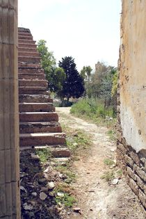 Cyprus Stairway by Bianca Baker