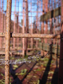Rusty Dew II by pensmelody