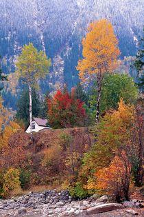 230af-alpine-fall-960970-002-v-21