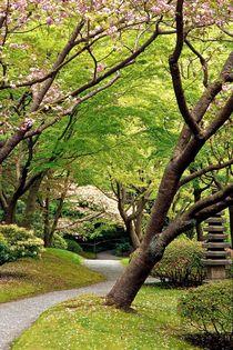 528af-nitobe-walk-in-spring-060882-001-v-17